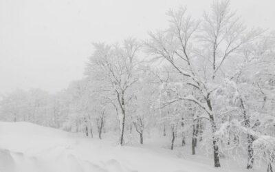 Efekt śnieżnej zaspy